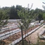 Цялостно изграждане на ферми за калифорнийски червеи